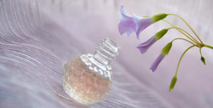 Zapachy twojego domu